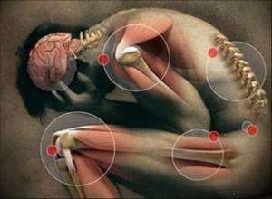 artrosi-osteoporosi